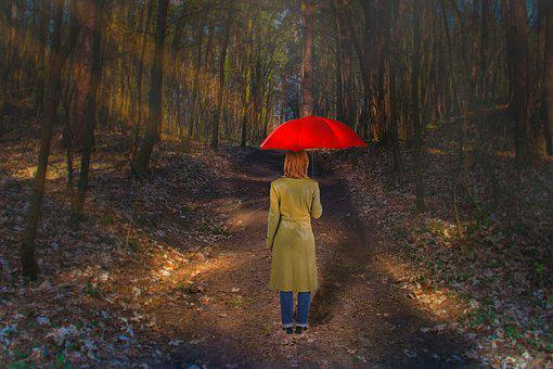 Forest, Woman, Screen, Red, Person, Trees, Female