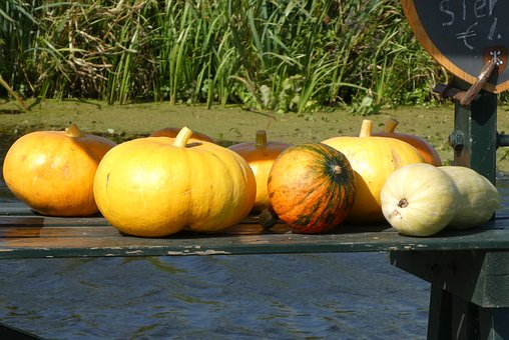 Pumpkins, Fruits, Autumn, Food, Harvest, Decoration