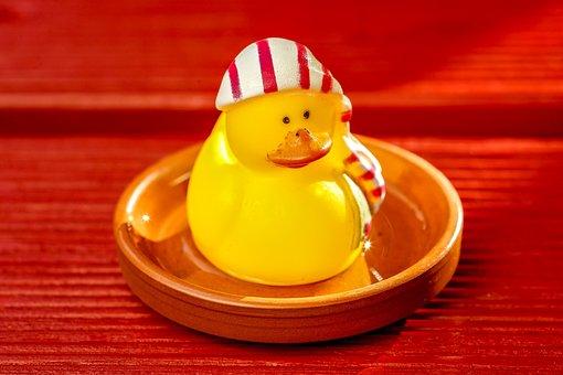 Toys, Duck, Rubber Duck, Funny, Fun, Bad, Cute
