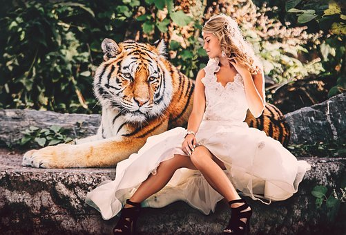 Tiger, Woman, Dress, White, Friendship, Love