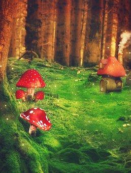 Fantasy, Forest, Mushrooms, Trees, Meadow, Matryoshka