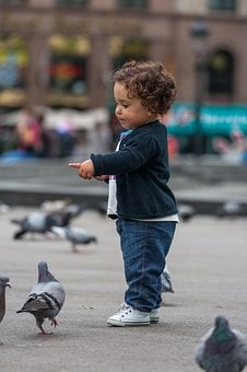 Kids, Baby, Pigeons, Area, Barcelona, Spain, Childhood