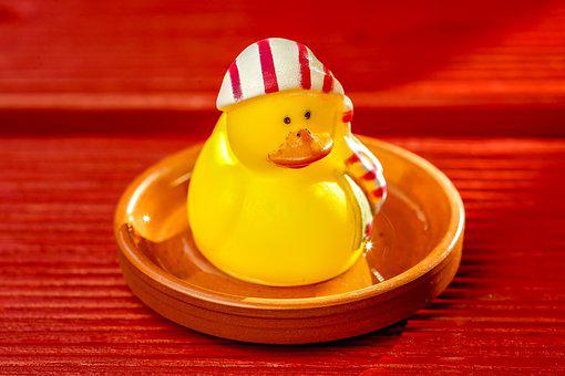 Toys, Duck, Rubber Duck, Funny, Fun, Bad, Cute