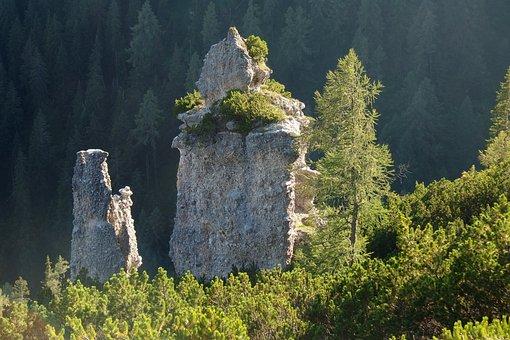 Rocks, Rock, Forest, Tree, Landscape, Nature, Summer