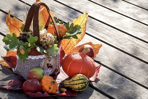 Autumn, Autumn Decoration, Thanksgiving, Autumn Motives