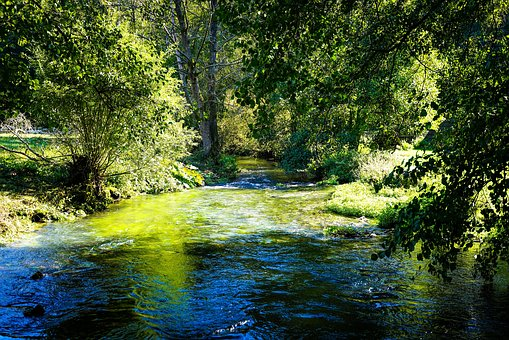 River, River Landscape, Water, Waters, Bach, Green