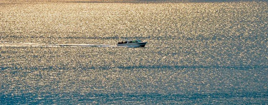 Powerboat, Wave, Evening Sun, Reflection, Mirroring