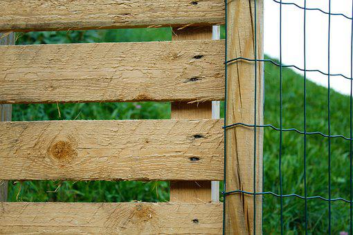 Fence, Wood, Wood Fence, Boards, Structure, Battens