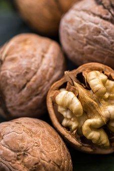 Walnut, Nut, Flora, Nature, Plant, Close Up, Macro