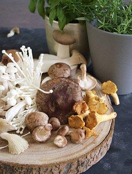 Mushroom, Fungus, Mushrooms, Shiitake, Girole, Enoki
