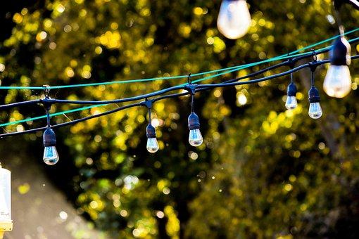 Lights, Green, Light, Leaves, Outside, Summer, Fall
