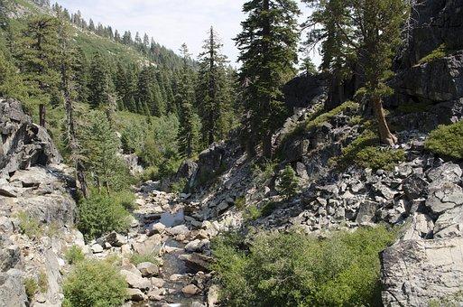 Lake, Tahoe, California, Outdoor, Trees, Mountain