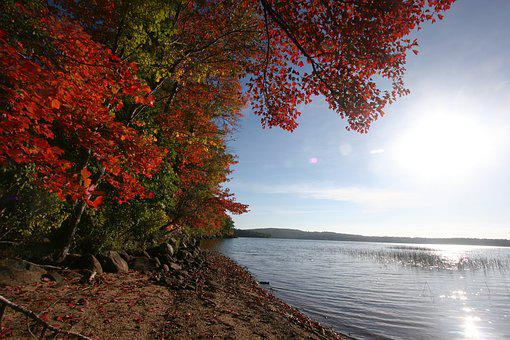 Massabesic Lake, Fall Foliage, Water, Reflections