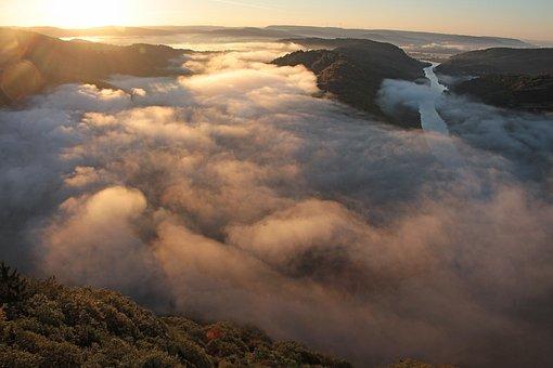 Fog, Morning Mist, Nature, Mood, Landscape