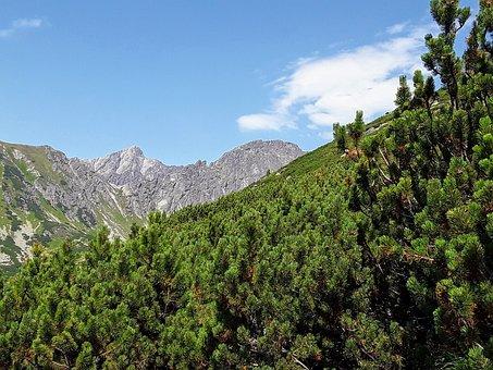 Both Solisko, Vysoké Tatry, Slovakia, Nature, Mountains