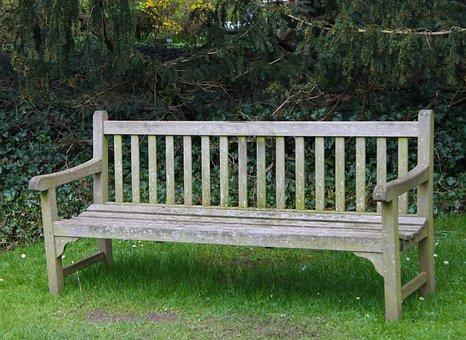 Chair, Sit, Park, Break, Cozy, Nature, Relaxation