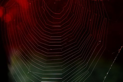 Cobweb, Red Light, Web, Weave, Structure, Background