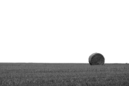 Hay Bales, Isolated, Transparent, Straw, Agriculture