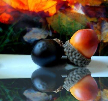 Autumn, Deco, Herbstdeko, Autumn Decoration, Decoration