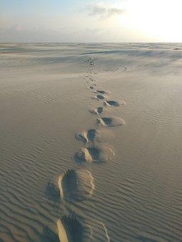 Traces, Sand, Sea, Beach, Background