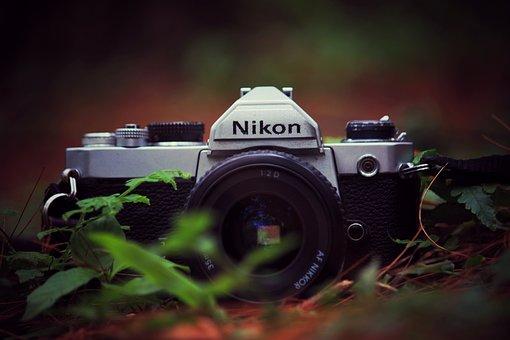 Camera, Girl, Female, Retro, Canon, Old, Photo, People