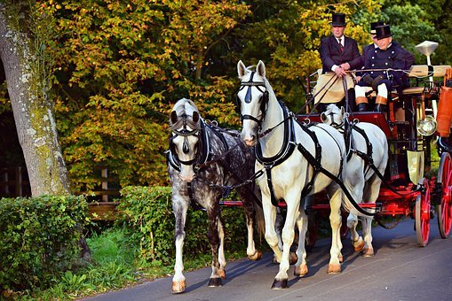 Horse, Coach, Horse Drawn, Vehicle, Nostalgia, Coachman