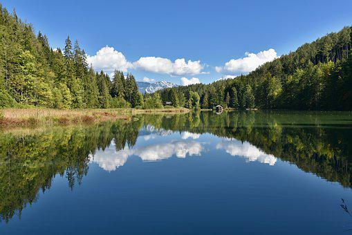 Nature, Landscape, Lake, Forest, Water