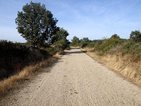 Path, Earth, Field, Rural Landscape, Nature, Landscape