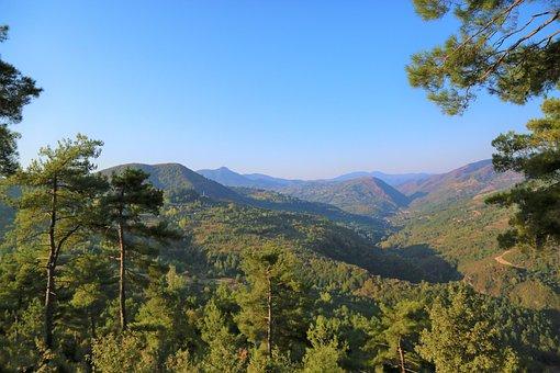 Landscape, Nature, Tree, Plant, Sky, Rural, Forest