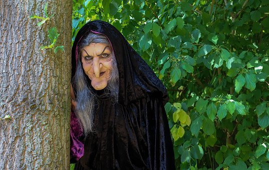 Witch, Portrait, Fantasy, Fairy Tale, Forest, Role-play