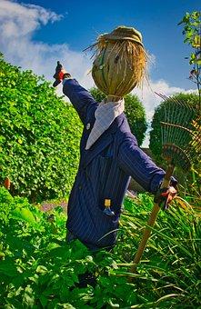 Scarecrow, Garden, Doll, Face, Funny, Protection