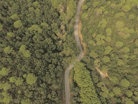 Aerial, Road, Car, Forest, Wallpaper, Drone, Nature