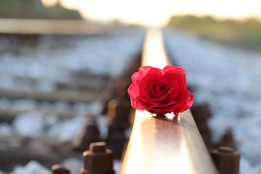 Red Rose On Rail, Lost Love, Remembering, Condolence