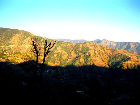 Hill, Evening, Sunset, Landscape, Nature, Sky, Tree