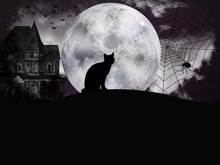 Halloween, Night, Fantasy, Full Moon, Dark, Chilling
