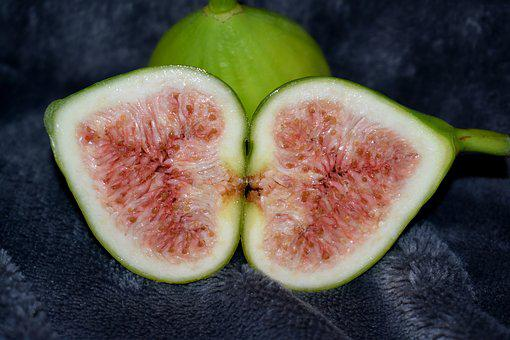 Fig, Fruit, Vitamins, Wood, Garden, Plant, Healthy