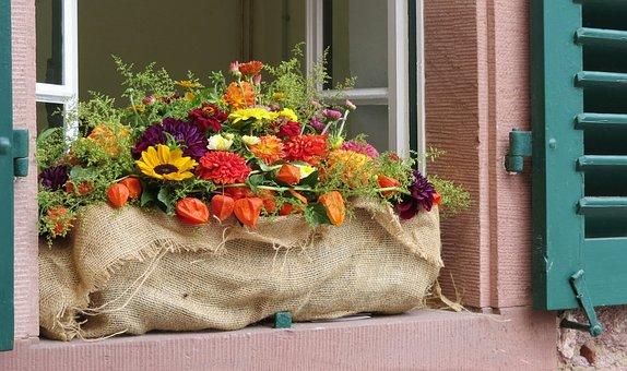 Herbstdeko, Flower Box, Window Sill, Autumn