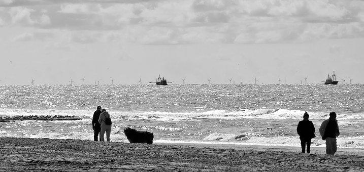 By The Sea, North Sea, Sw, Beach, Water, Nature