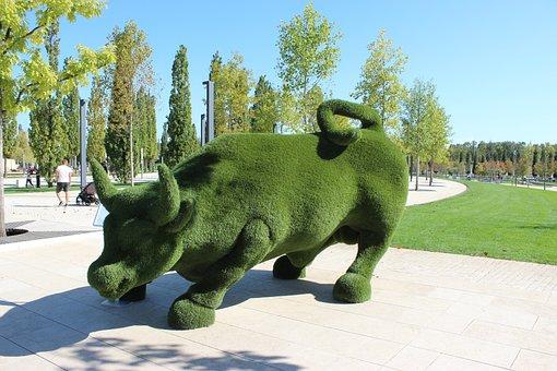 Krasnodar, Sports, Stadium, Park, Bull
