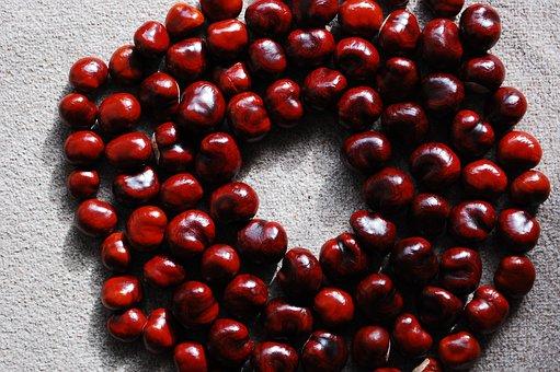Chestnut, Nuts, District, Still Life, Red