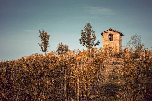 Landscape, Monferrato, Sky, Italy, Hills, Cultivation