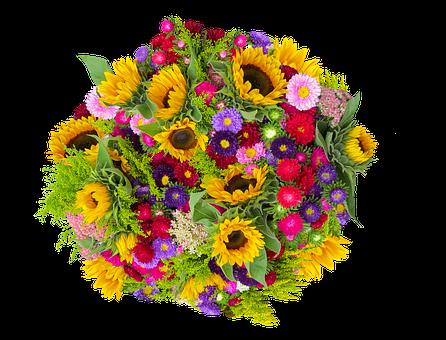 Emotions, Flower, Plant, Bouquet