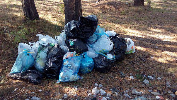 Garbage, Environmental Action, Garbage Collection