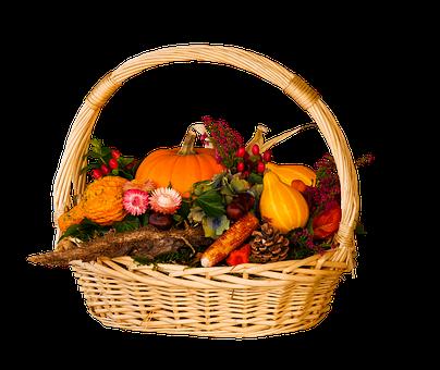 Season, Autumn, Harvest, Thanksgiving