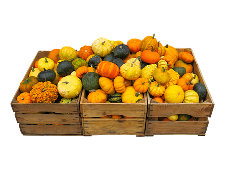 Eat, Food, Harvest, Thanksgiving, Autumn Decoration