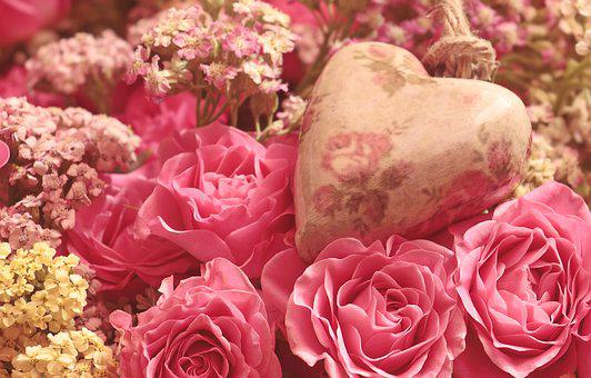 Roses, Heart, Noble Roses, Romantic, Pink, Flower