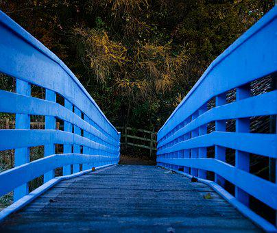Bridge, Wooden, Wood, Trees, Railing, Scenic, Away