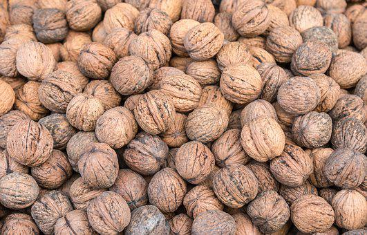 Walnut, Many, Healthy, Tasty, Food, Fruit, Nutrition