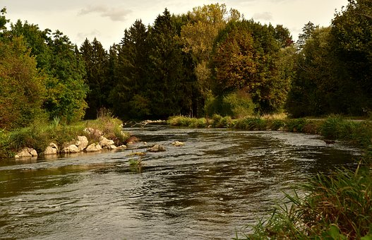 River, Bach, Water, Landscape, Nature, Forest, Creek