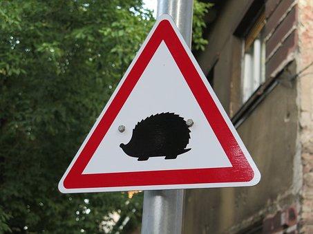 Hedgehogs, Hazard, Rules Of The Road, Traffic Symbol
